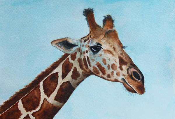 Giraffe Painting - Giraffe by James Zeger