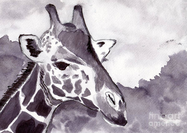 Black Wall Art - Painting - Giraffe by Michael Rados