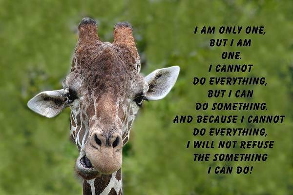 Photograph - Giraffe Quote-3 by Rudy Umans