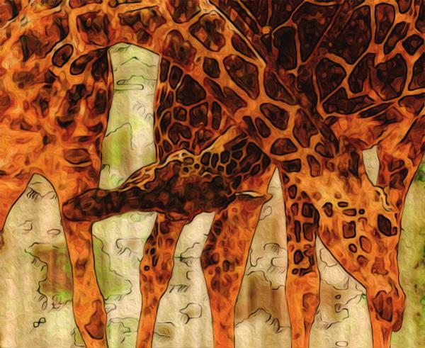 Wall Art - Painting - Giraffes  by Jack Zulli