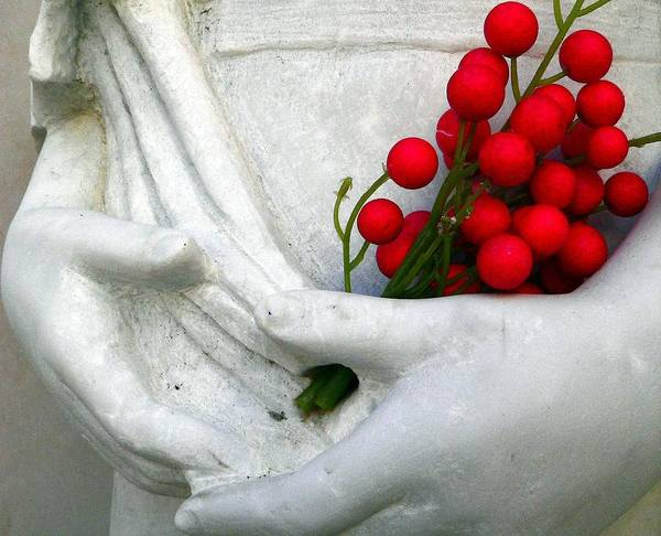 Photograph - Girl And Red Berries by Jeff Lowe