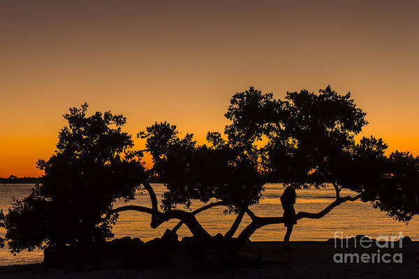 Mangrove Wall Art - Photograph - Girl And Tree by Marvin Spates