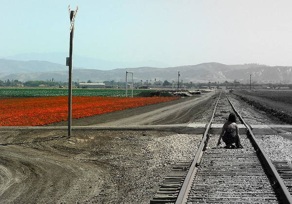 Photograph - Girl Tracks Orange Flowers by Jeff Lowe