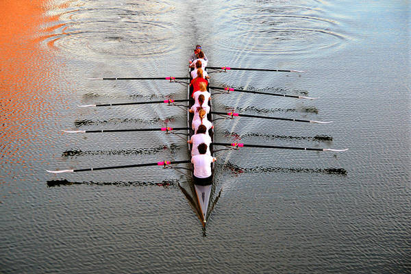 Rowing Photograph - Girls Gone Wild by David Lee Thompson
