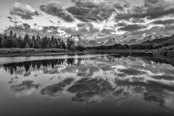 Oxbow Park Photograph - Give In by Jon Glaser