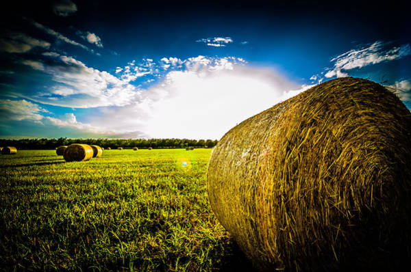 Photograph - Give Me More Hay Bale by David Morefield
