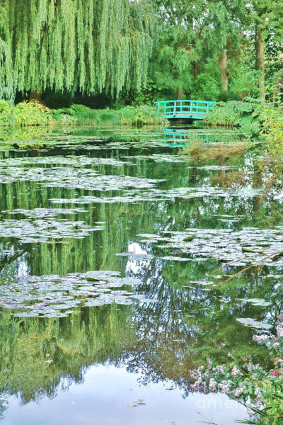 Giverny Photograph - Giverny by Olivier Le Queinec