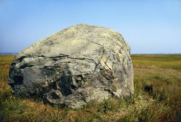 Glacial Erratic Photograph - Glacial Erratic, Cape Cod by George Whiteley