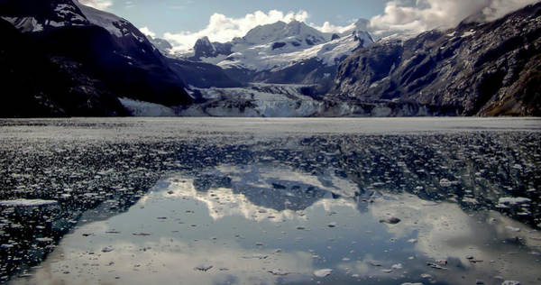 Wall Art - Photograph - Glacier Bay by Karen Wiles