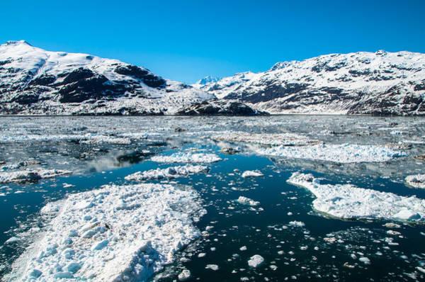 Photograph - Glacier Bay by Marilyn Wilson
