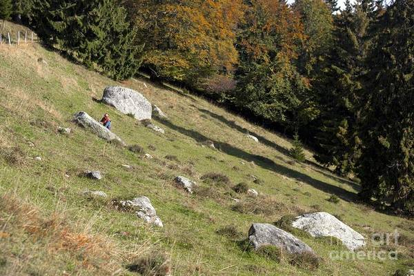 Glacial Erratic Photograph - Glacier Erratics Landscape And Research by Thierry Berrod, Mona Lisa Production