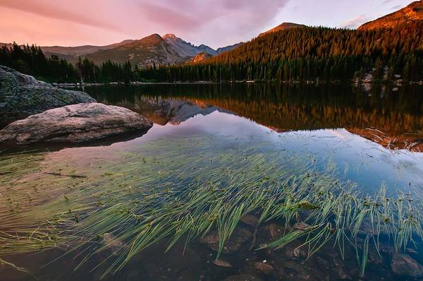Alpenglow Photograph - Glacier Gorge Grassy Reflection by Mike Berenson