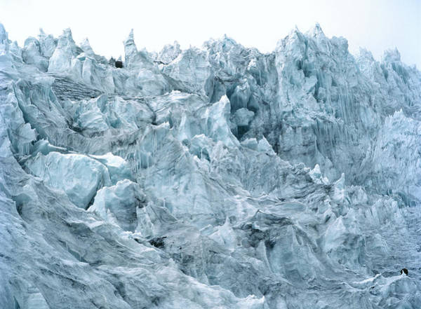 Fissure Photograph - Glacier Ice by Dr Morley Read/science Photo Library