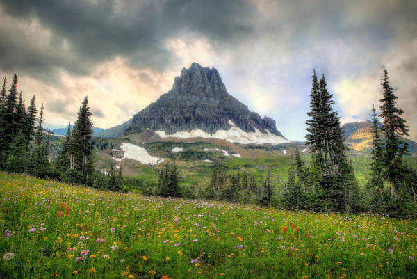 Photograph - Glacier Meadows by Ryan Smith