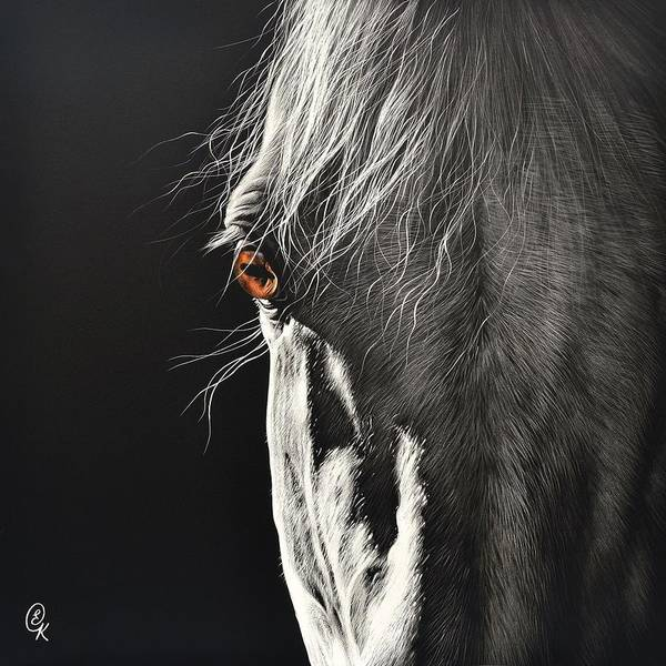 Equine Drawing - Glance by Elena Kolotusha