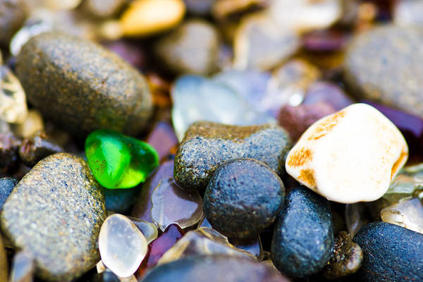Photograph - Glass Beach Treasures by Priya Ghose