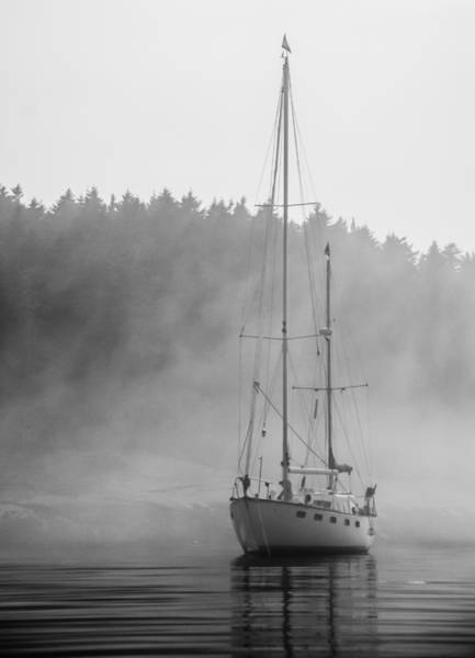 Photograph - Glass Lady In The Fog by Jennifer Kano
