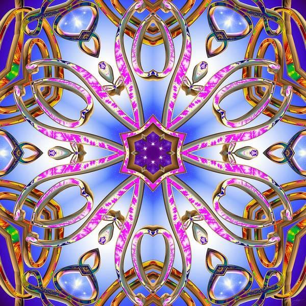 Digital Art - Gleaming Flower Bands by Derek Gedney