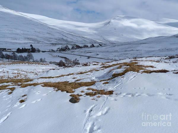 Photograph - Glen Clunie - Winter by Phil Banks