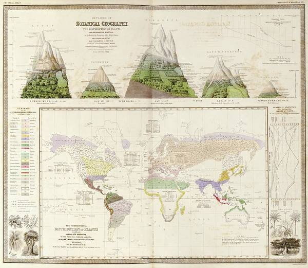 1800s Wall Art - Photograph - Global Botanical Geography by Library Of Congress, Geography And Map Division