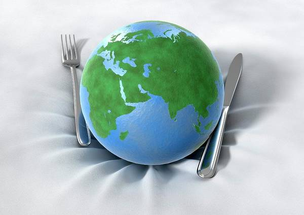 Wall Art - Photograph - Global Food Production by Animated Healthcare Ltd