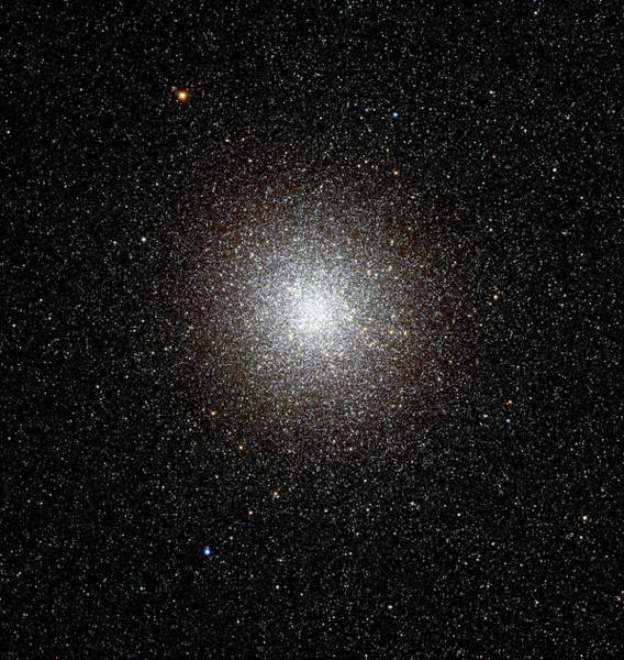 Canada-france-hawaii Telescope Wall Art - Photograph - Globular Star Cluster M22 by Canada-france-hawaii Telescope/jean- Charles Cuillandre/science Photo Library