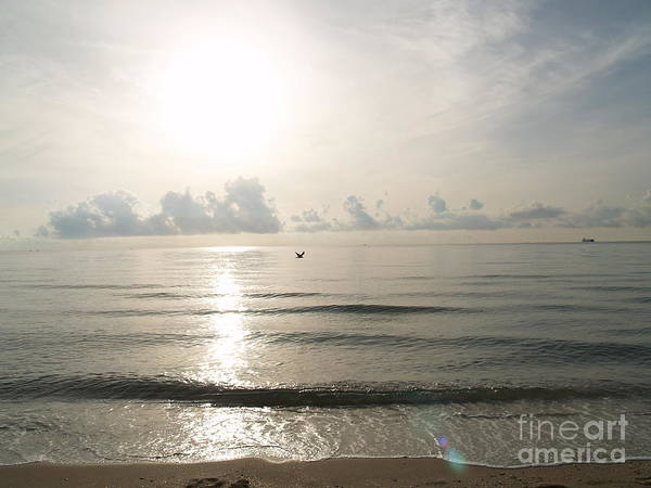 Photograph - Glorious Morning At The Beach by Robin Maria Pedrero