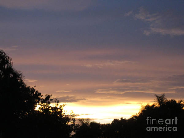 Photograph - Glorious Sunset by Oksana Semenchenko