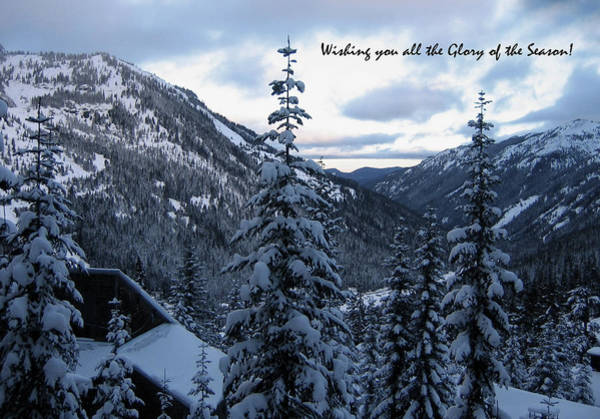 Photograph - Glory Of The Season Wish by Lorraine Devon Wilke