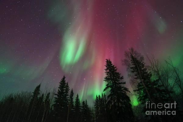 Yukon Photograph - Glowing Skies by Priska Wettstein