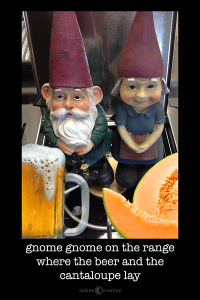 Photograph - Gnome On The Range Poster by Tim Nyberg
