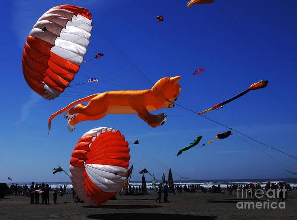 Kite Festival Wall Art - Photograph - Go Fly A Kite 1 by Bob Christopher