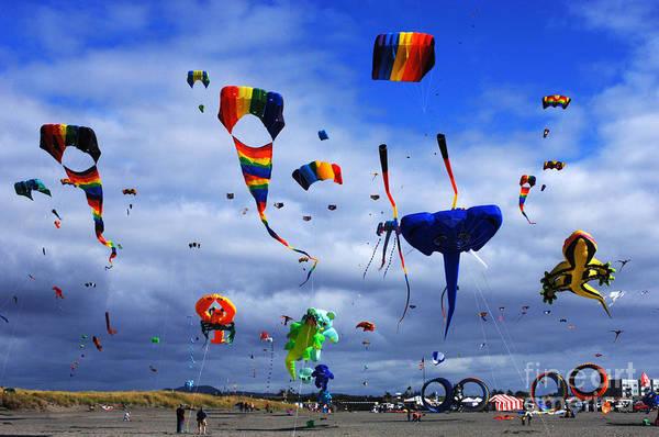Kite Festival Wall Art - Photograph - Go Fly A Kite 4 by Bob Christopher