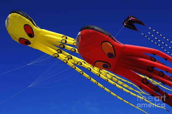 Kite Festival Wall Art - Photograph - Go Fly A Kite 6 by Bob Christopher