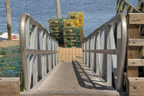 Photograph - Go Get The Lobster Traps by Kirkodd Photography Of New England