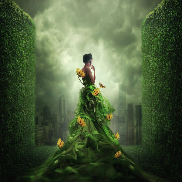 Imaginative Wall Art - Photograph - Go Green by Hardibudi