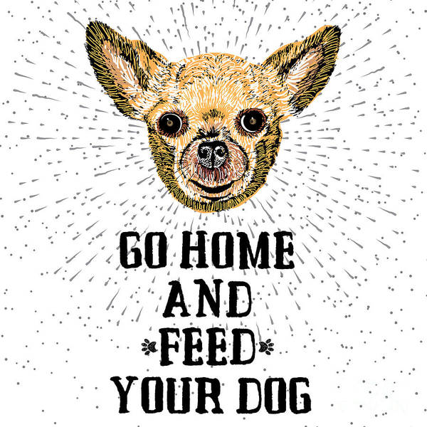 Playful Digital Art - Go Home And Feed Your Dog. Sign With by Golden Shrimp