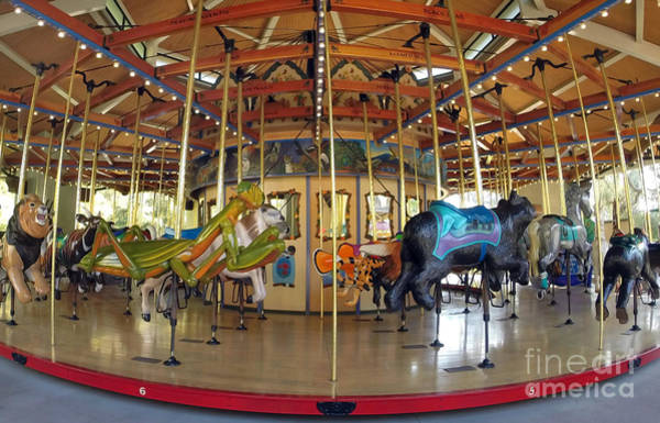 Merry Go Round Photograph - Go Round by Dan Holm