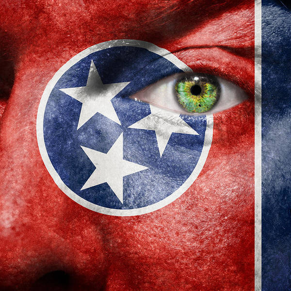 Wall Art - Photograph - Go Tennessee by Semmick Photo