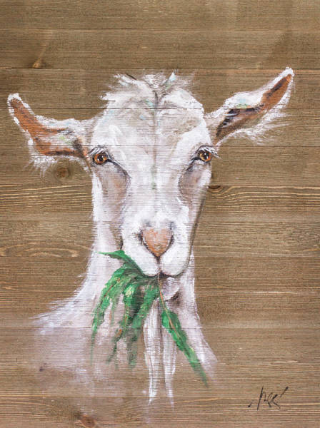 Wall Art - Painting - Goat by Molly Susan Strong