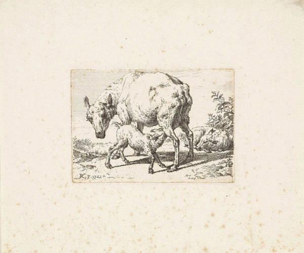 Wall Art - Drawing - Goat Suckling Her Young, Print Maker Reinier Vinkeles by Reinier Vinkeles And Adriaen Van De Velde