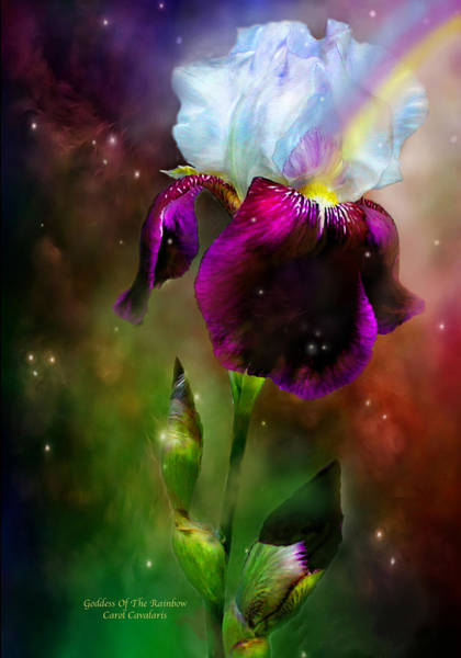 Purple Iris Mixed Media - Goddess Of The Rainbow by Carol Cavalaris