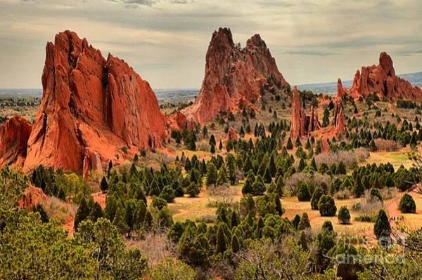 Photograph - Gods Garden In Colorado by Adam Jewell