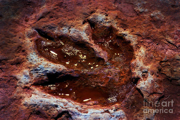 Wall Art - Photograph - Godzilla Was Here In  Arizona by Paul W Faust -  Impressions of Light