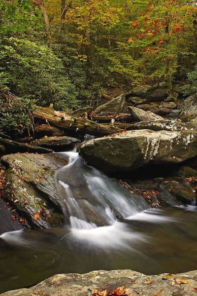 Ocoee Wall Art - Photograph - Goforth In The Fall by Gregory Cook