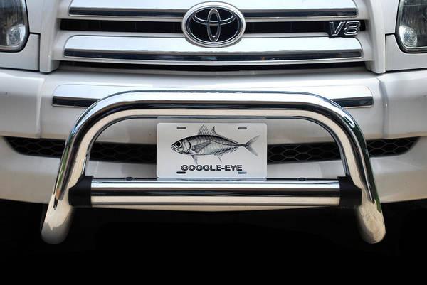 Digital Art - Goggle Eye Plate by Steve Ozment