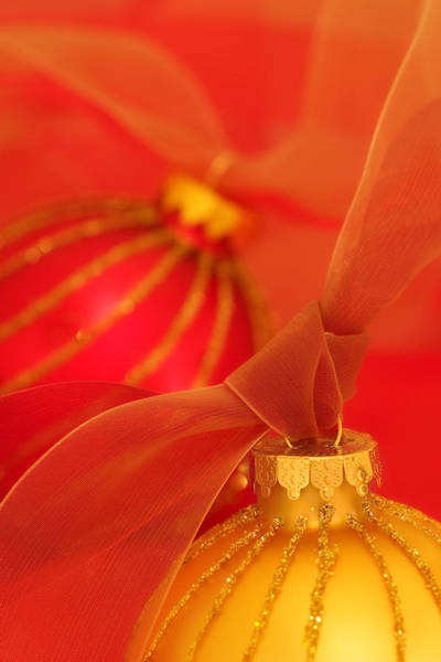 Ornaments Wall Art - Photograph - Gold And Red Ornaments With Ribbons by Carol Leigh