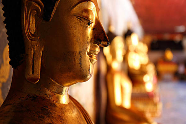 Photograph - Gold Buddha At Wat Phrathat Doi Suthep by Metro DC Photography