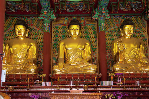 Religion Photograph - Gold Budha Statues Seoul, South Korea by Holgs