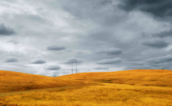 Photograph - Gold Country And A Cloudy Evening by Rima Biswas